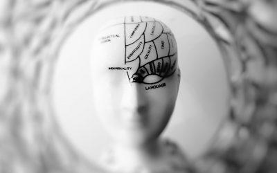 Az agyunk vaksötétben ücsörög